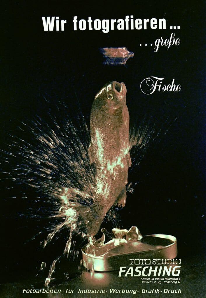 Fasching Fotostudio, der Fisch als Logo